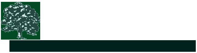 Frank Massin Agency Logo